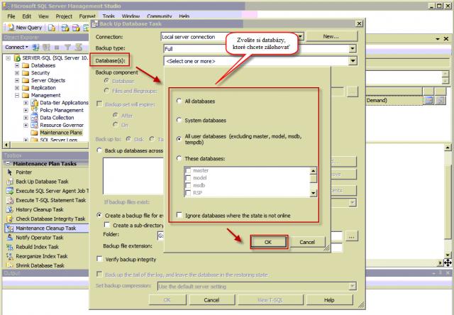 Nastavenie zálohovania - výber databáz na zálohovanie