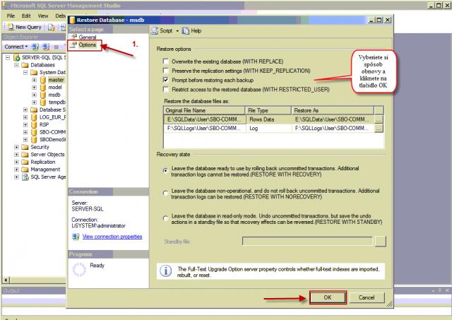 Nastavenie spôsobu obnovy SQL databázy zo zálohy v záložke Options